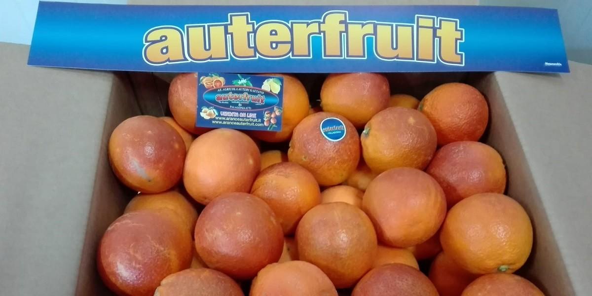 vendita online arance siciliane